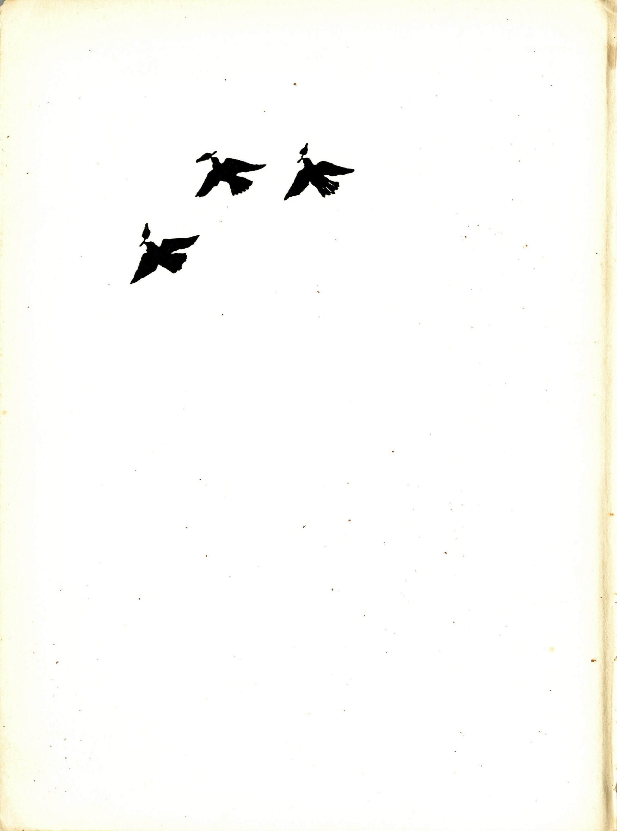 Page with ornament